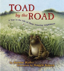 Toad by the Road by Joanne Ryder
